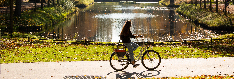 Free tour di Berlino in bici
