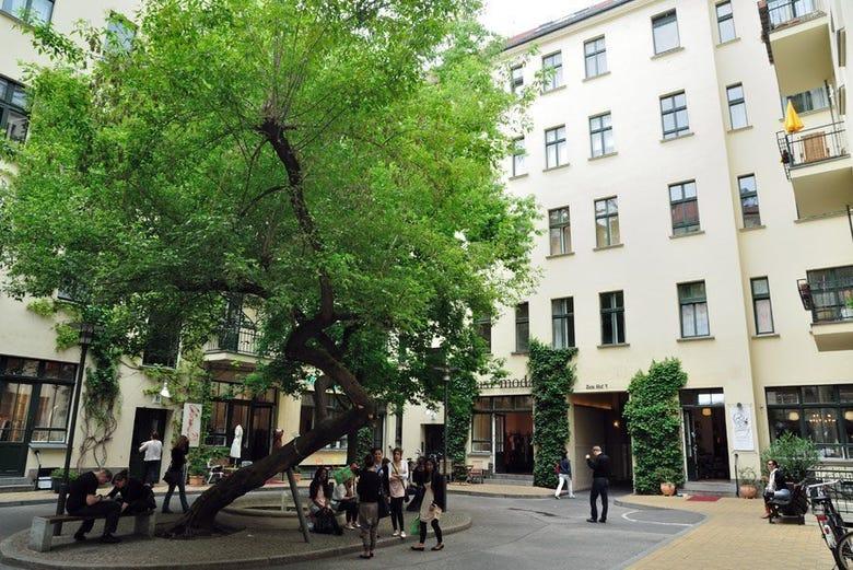 Recorrido de patios y arte por el Barrio Judío de Berlín