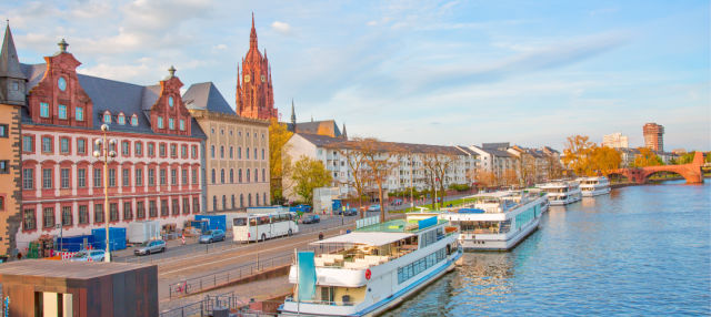 Panoramic Bus and Walking Tour of Frankfurt