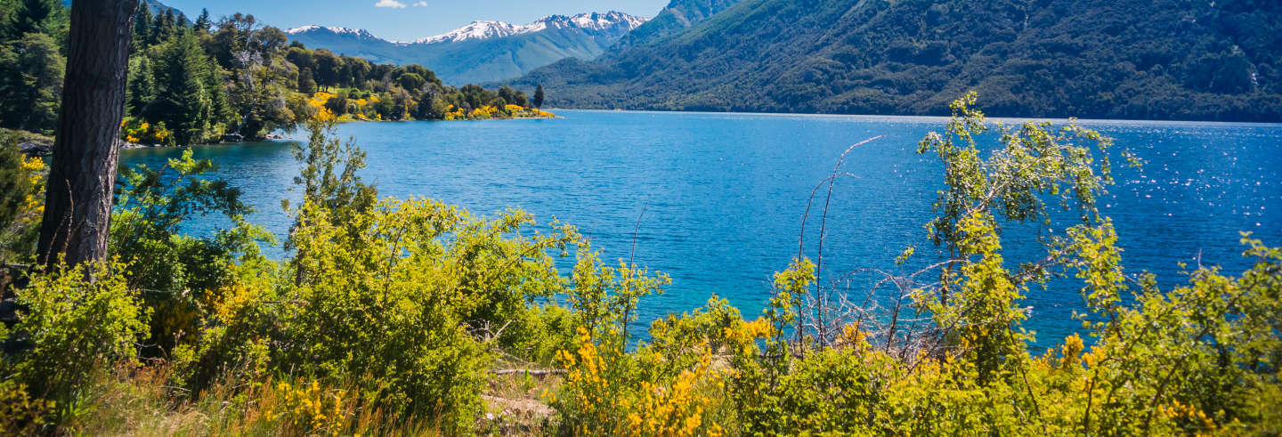 Kayak Tour of Gutiérrez Lake