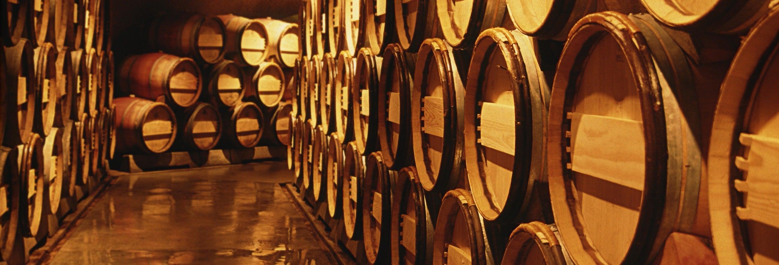 Tour pelo Vale de Calingasta + Degustação de vinhos