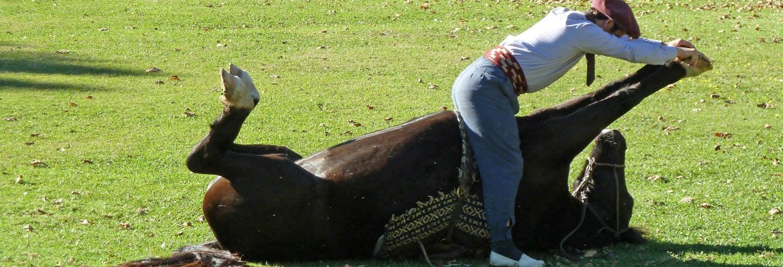 Excursion d'une journée à la découverte de la culture gaucho