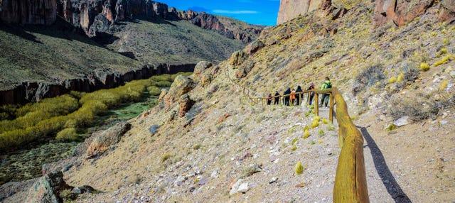 Excursión a la Cueva de las Manos + Trekking