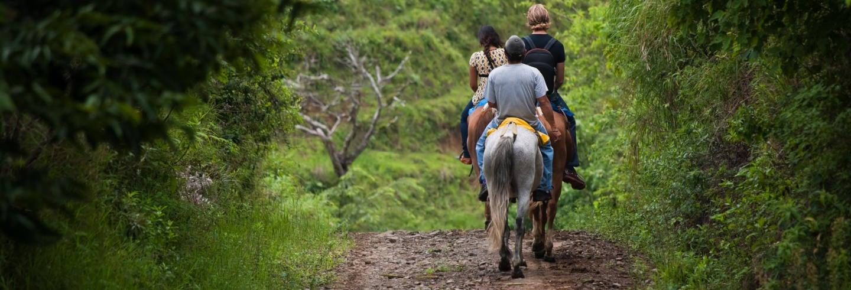 Paseo a caballo por la selva + Visita a una comunidad guaraní