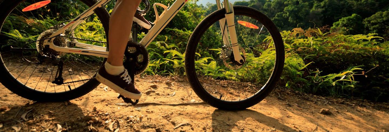 Tour en bicicleta por Foz de Iguazú