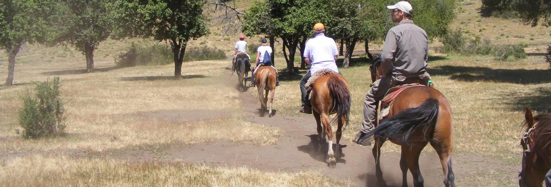 Paseo a caballo por las comunidades mapuches