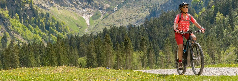 Tour del Parco Nazionale Lanín in bici