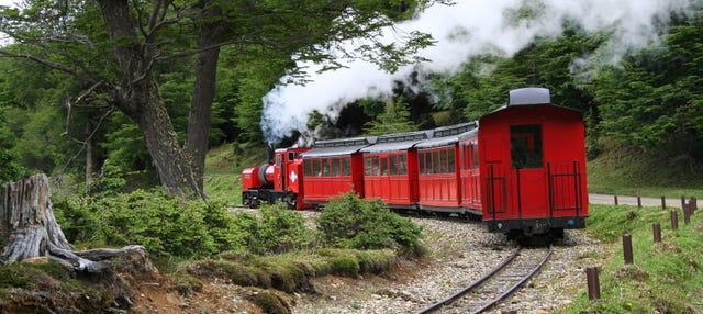 Excursión a Tierra del Fuego + Tren del Fin del Mundo