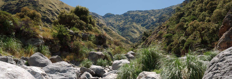 Excursión a las Sierras de Comechingones