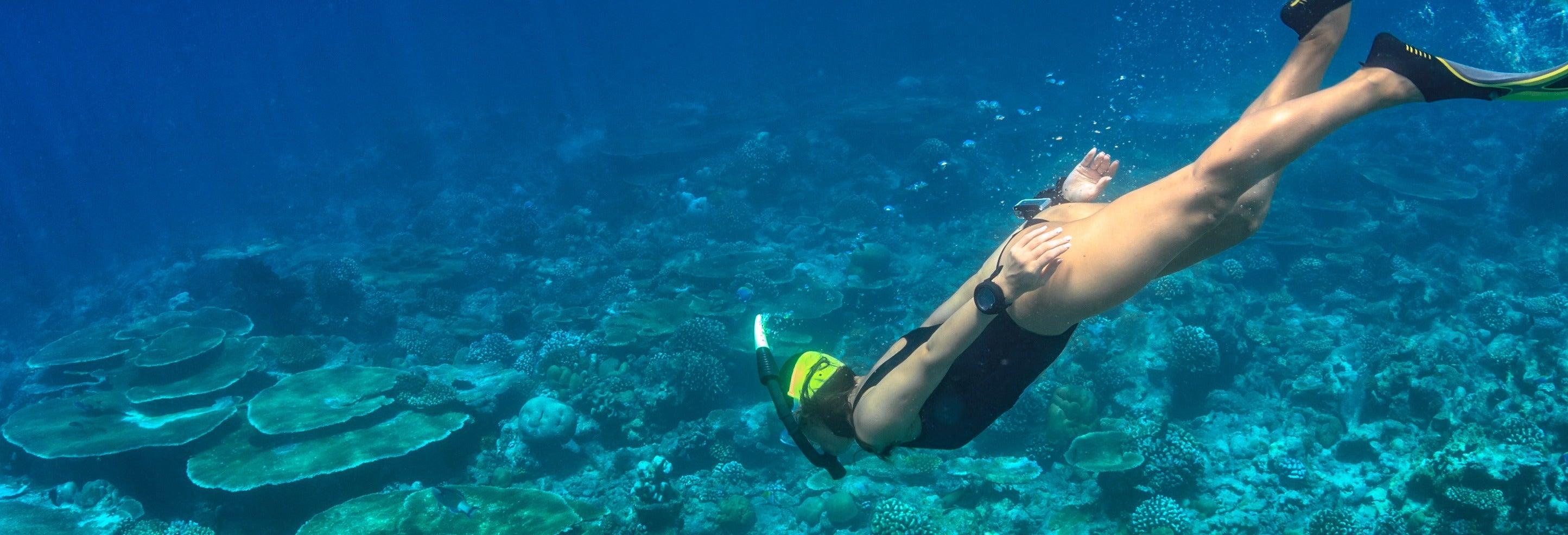 Snorkel en el Dique Punta Negra