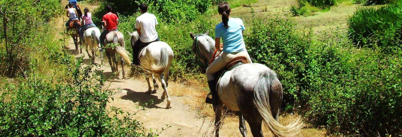 Paseo a caballo por el norte de Aruba