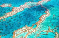 Excursión a la Gran Barrera de Coral