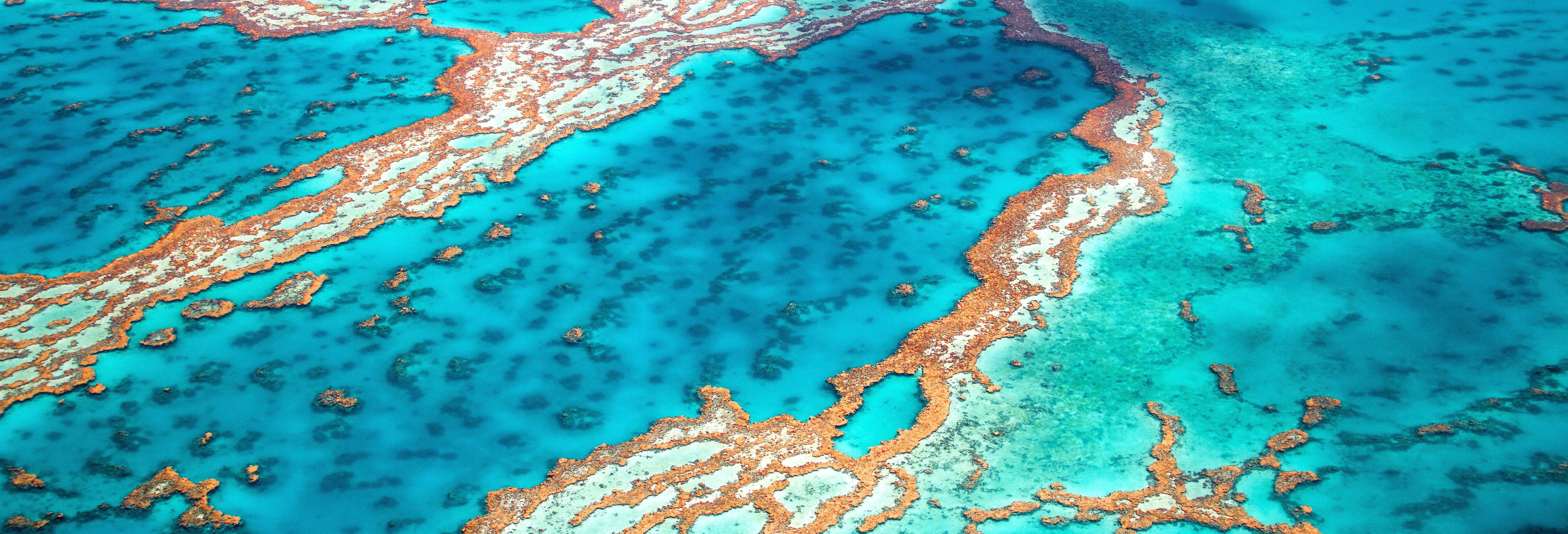 Excursion à la Grande Barrière de Corail et plateforme Marine World