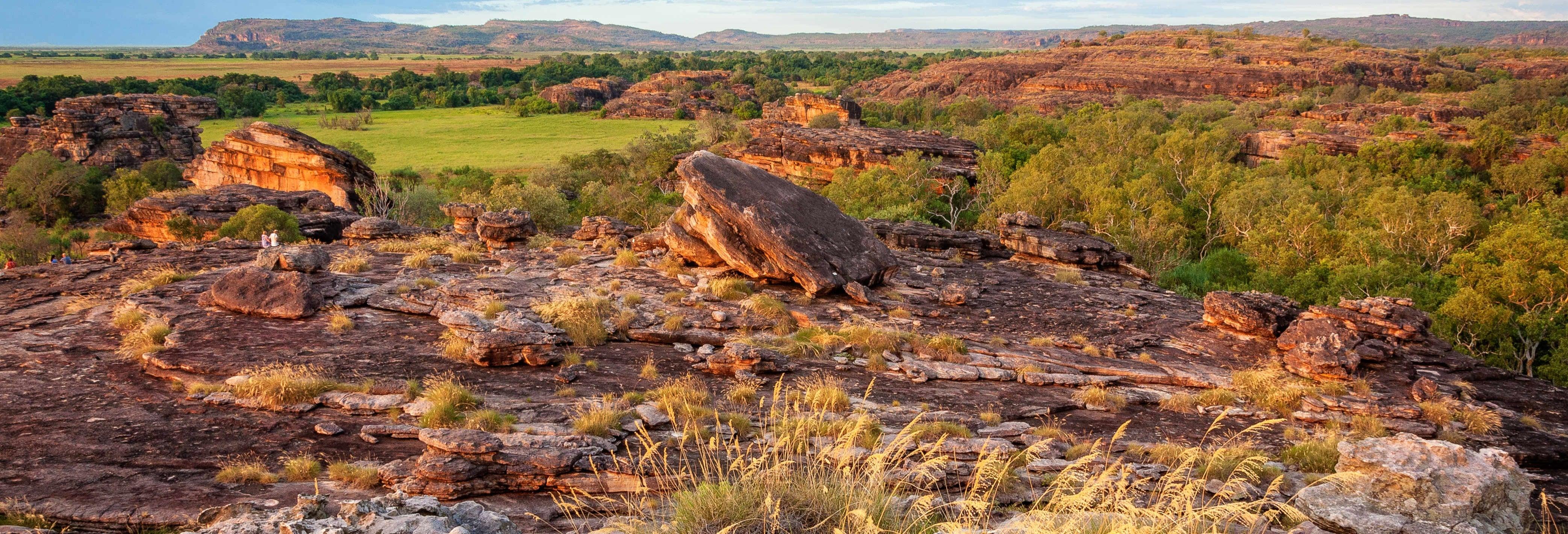 Excursión al Parque Nacional Kakadu