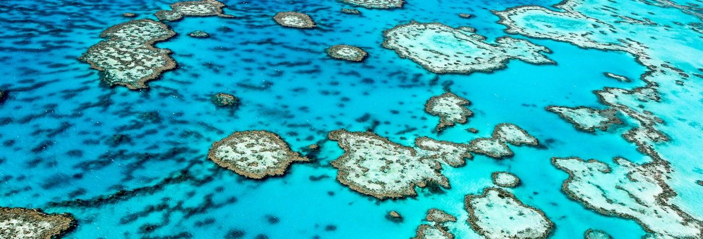 Escursione di 3 giorni alla Grande barriera corallina