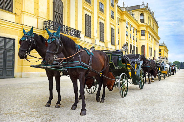 Horse drawn carriages outside Schönbrunn Palace