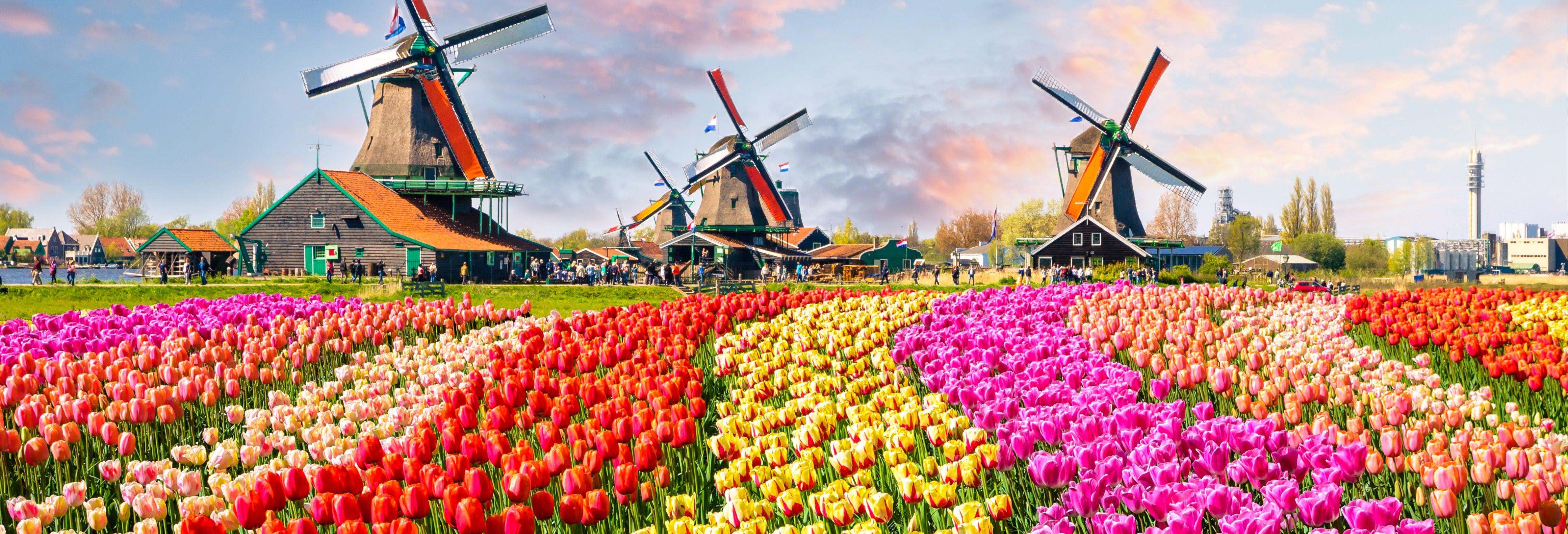 Excursión a Keukenhof y los molinos de Kinderdijk