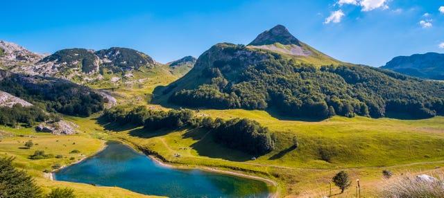 Excursión al Parque Nacional Sutjeska