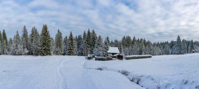 Excursion aux Montagnes Olympiques et à Vrelo Bosne