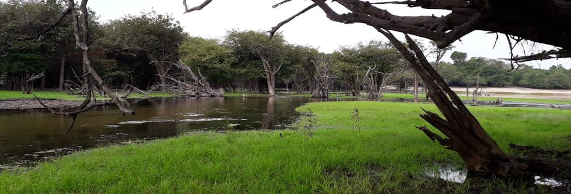 Tour por las comunidades ribereñas del Tapajós