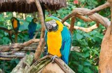 Ingresso do Parque das Aves