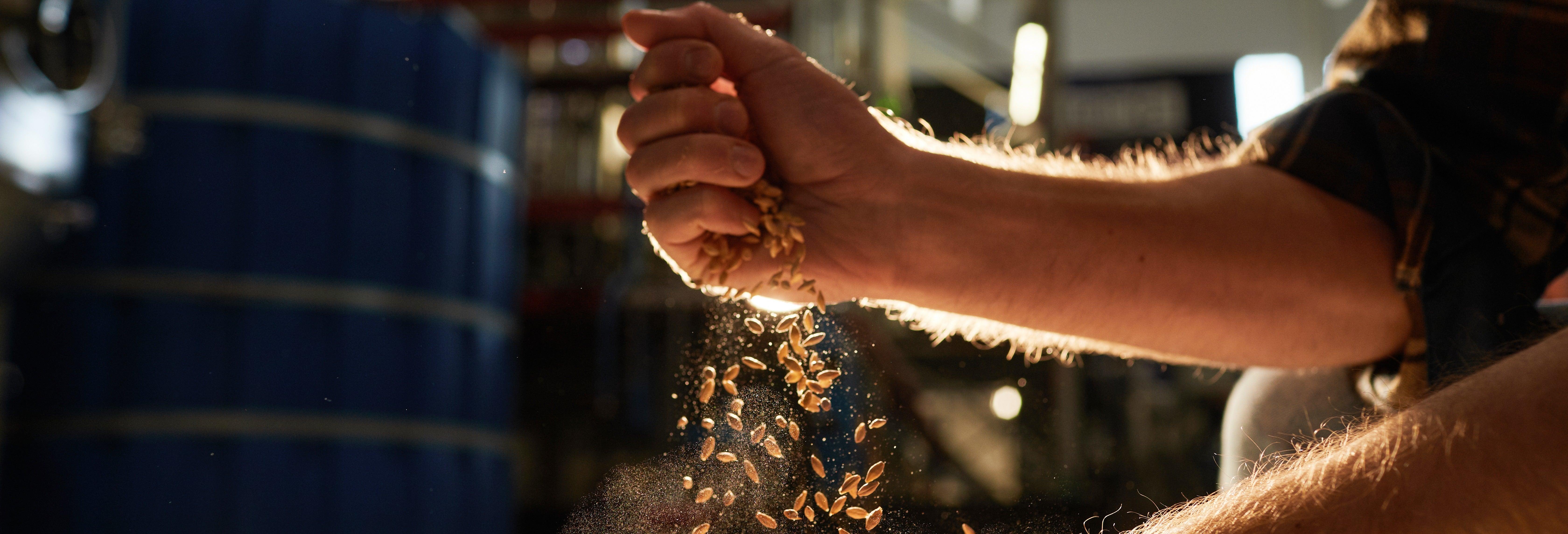 Visita al birrificio 277 Craft Beer