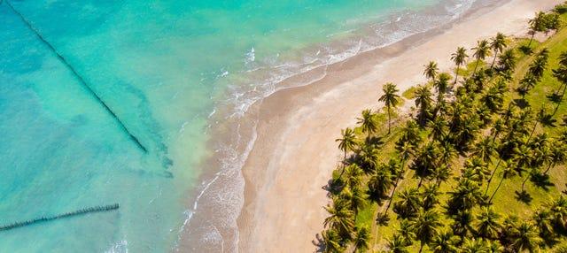 Excursão privada ao Mirante da Sereia, praia de Ipioca e Paripueira
