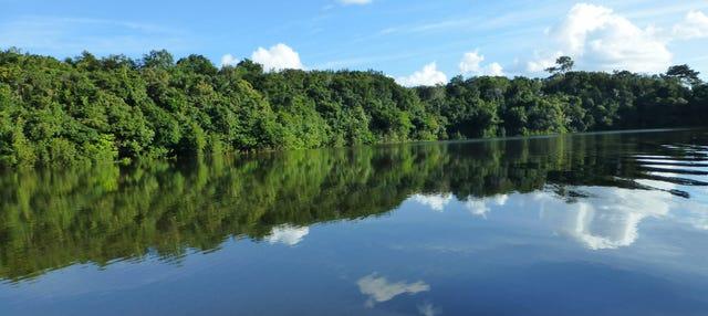 Tour de 2 dias pela floresta amazônica