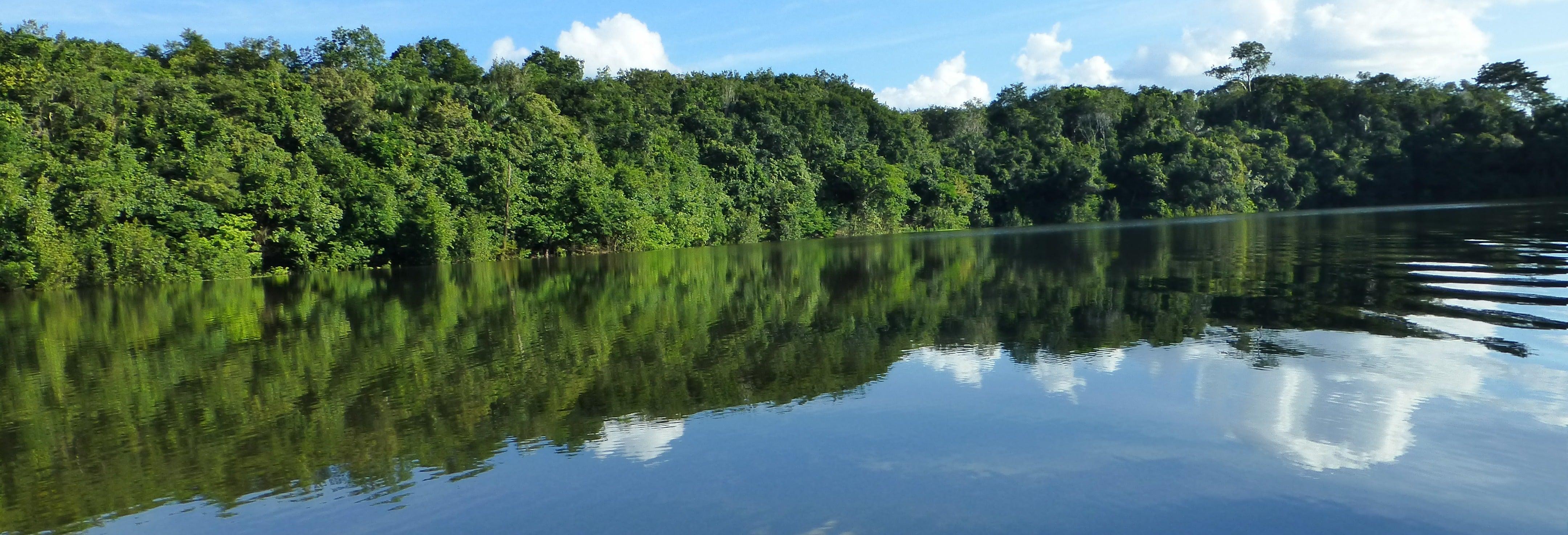 Tour di 2 giorni nella foresta amazzonica