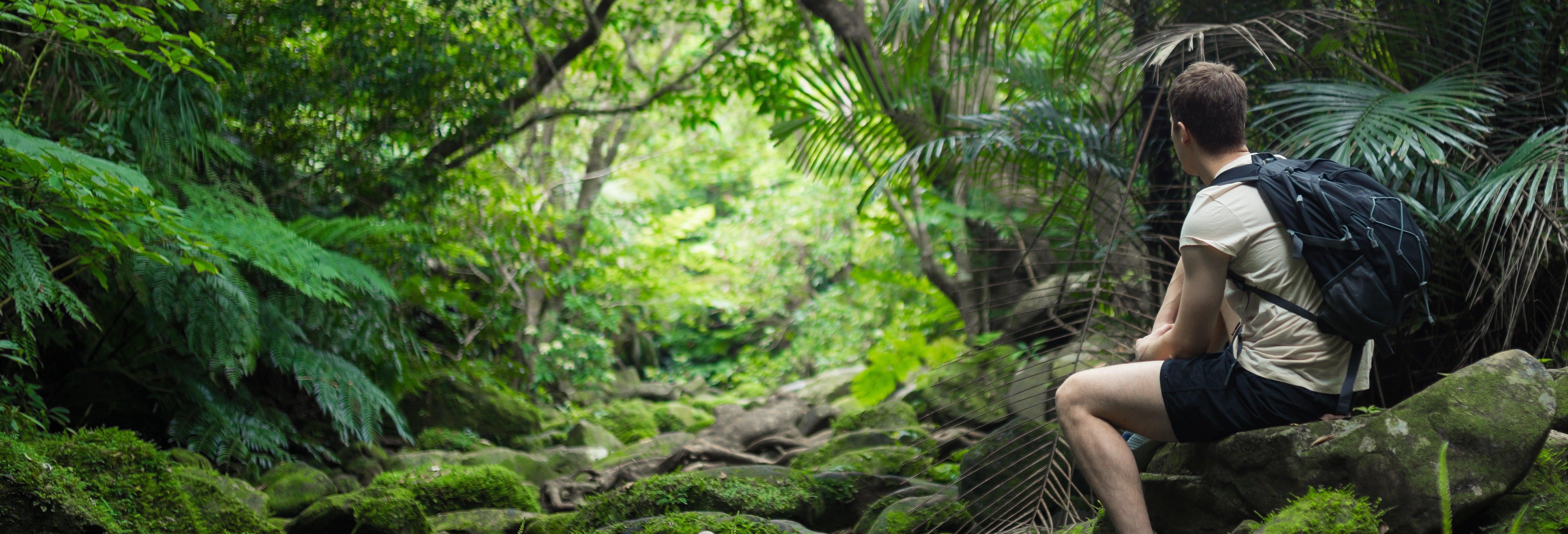 Amazon Jungle Three Day Tour