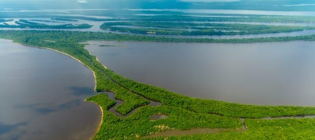 Tour pela floresta amazônica e ilhas Anavilhanas