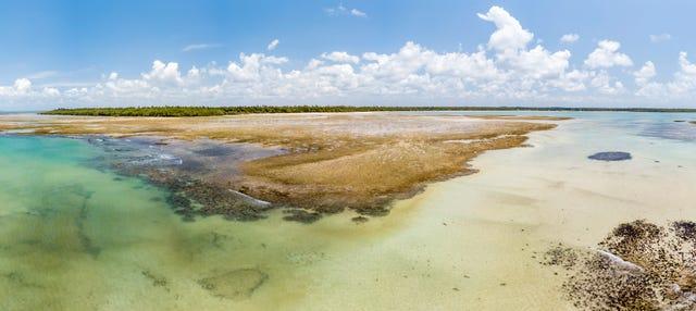 Excursão à praia de Garapuá