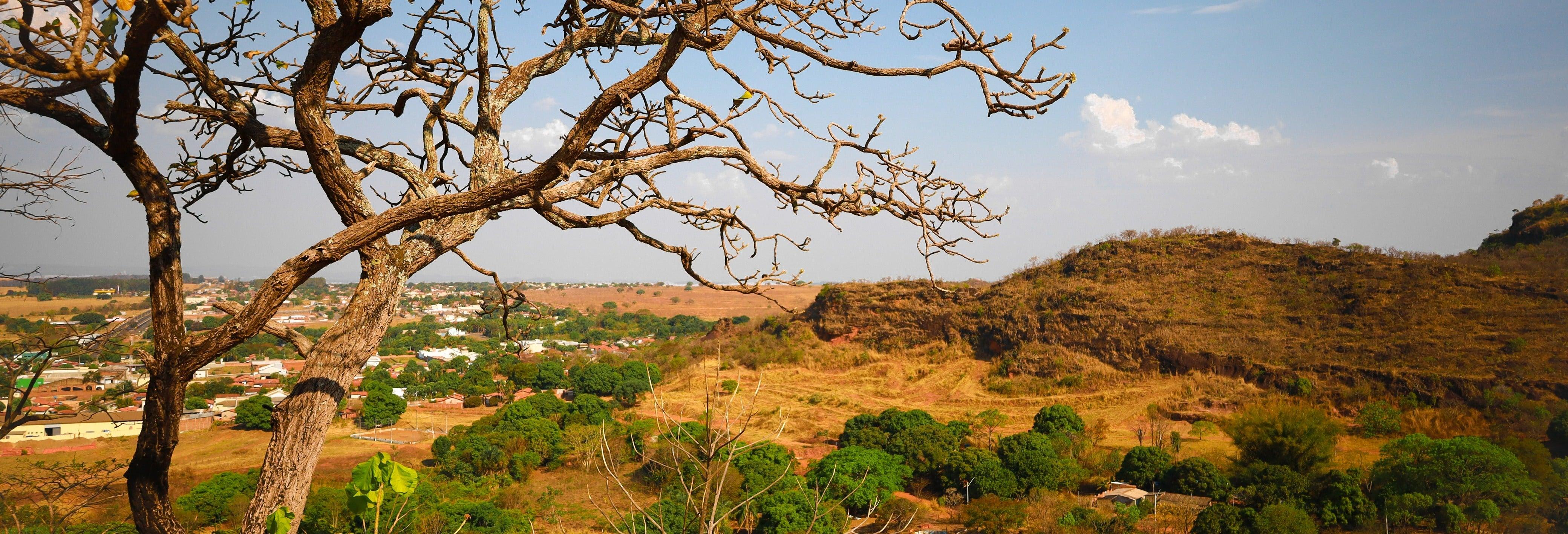 Ilha do Bananal e Parque do Cantão em 3 dias
