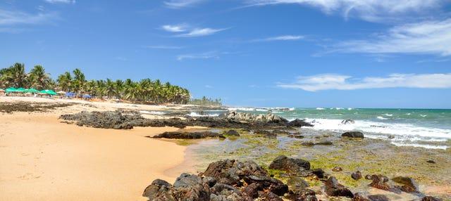 Tour pelas praias de Salvador