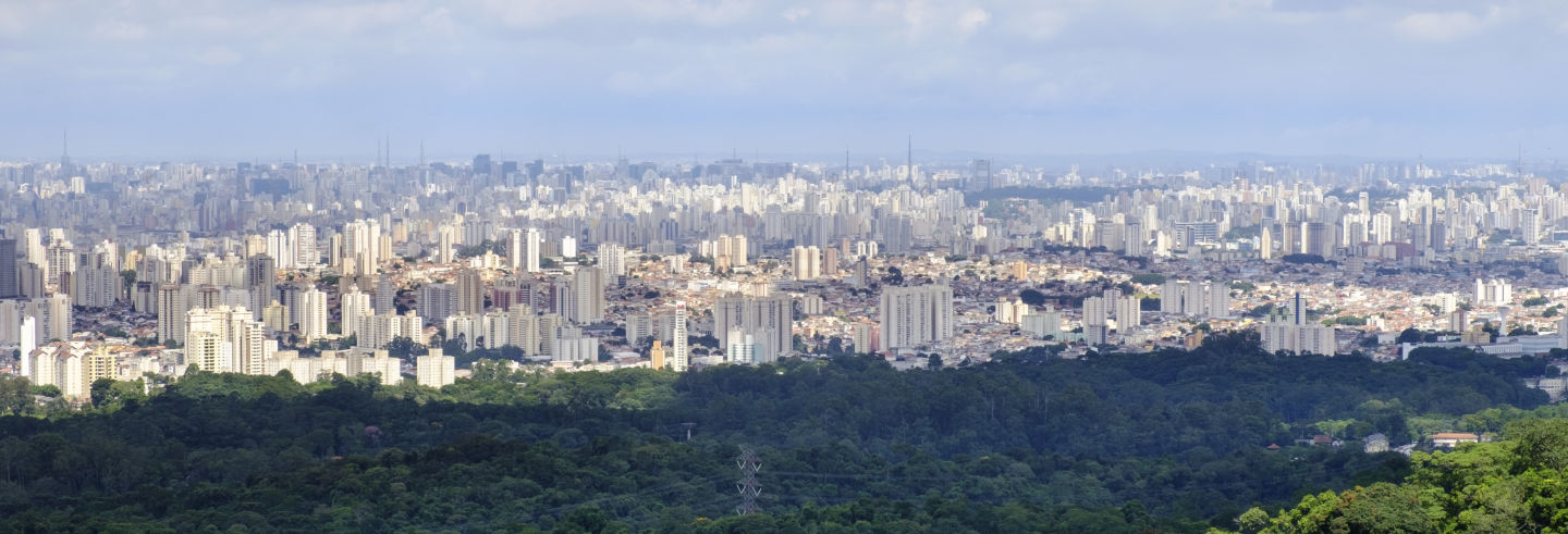Excursión privada a São Paulo
