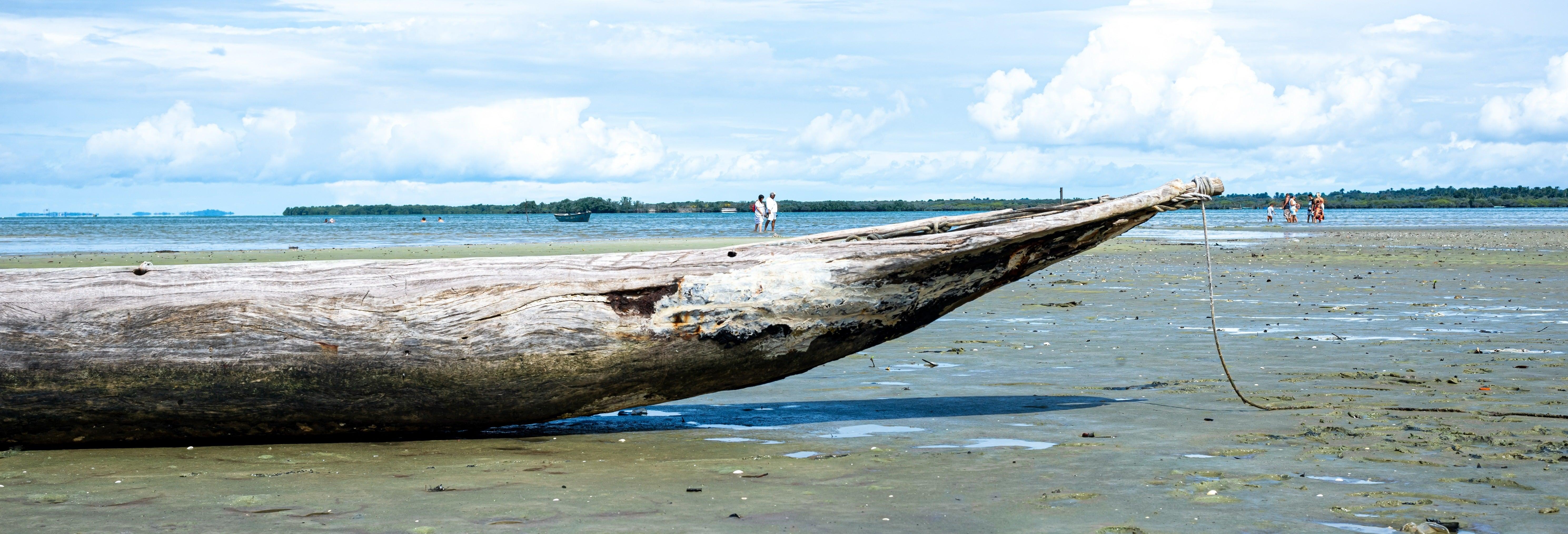 Excursión a la isla de Santo Amaro