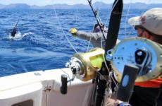 Pesca en la isla de Sal