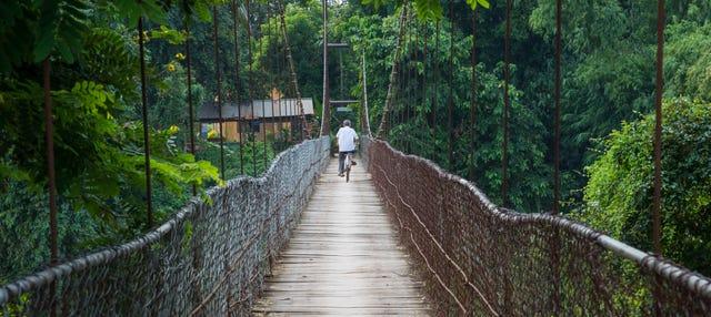 Tour en bicicleta por Battambang