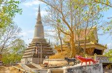 Excursión privada a Phnom Baset y Udong