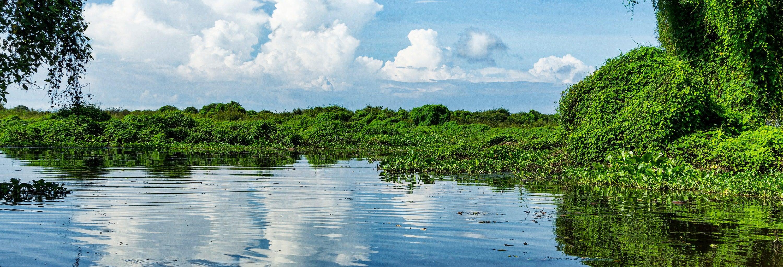 Paseo en barco por el lago Tonlé Sap
