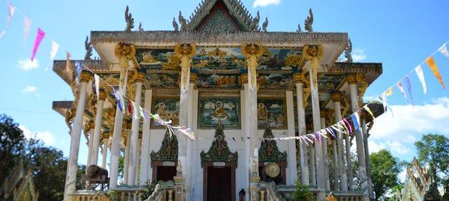 Excursión privada a Battambang