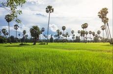 Excursión a una aldea tradicional camboyana