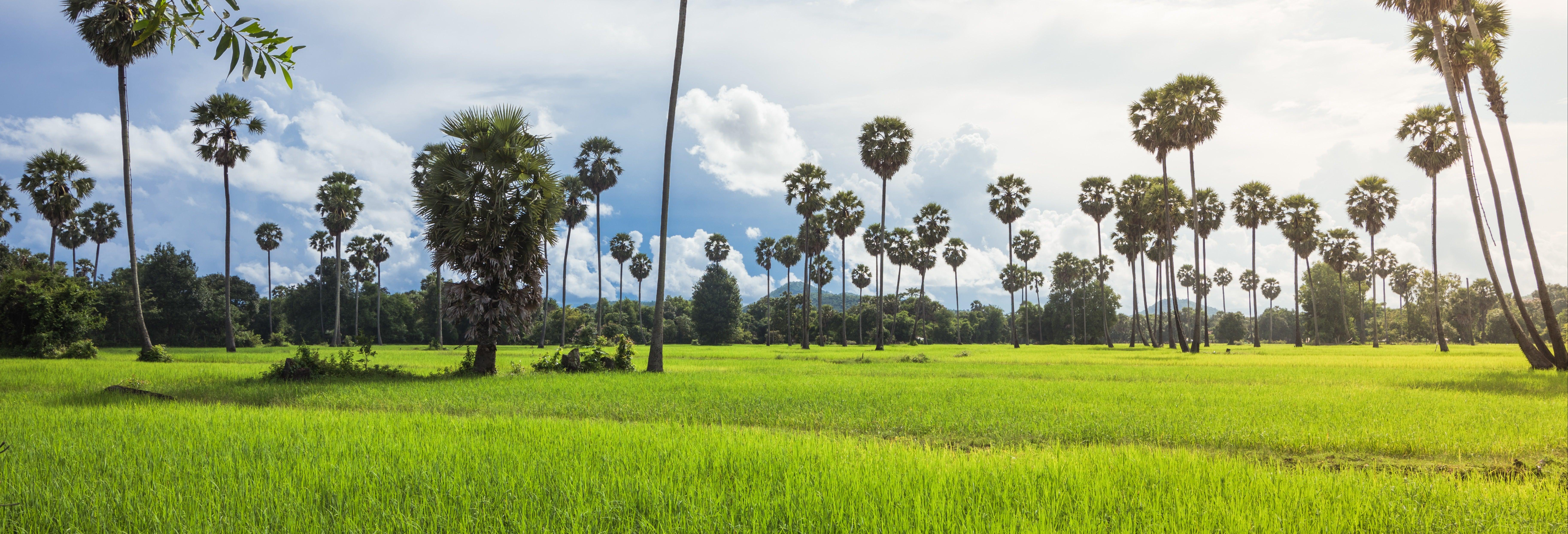 Excursão a uma aldeia tradicional cambojana