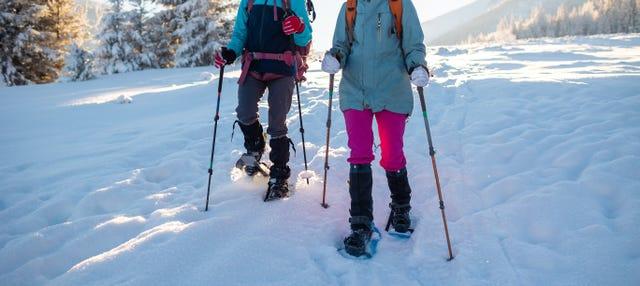 Balade en raquettes à neige à Banff