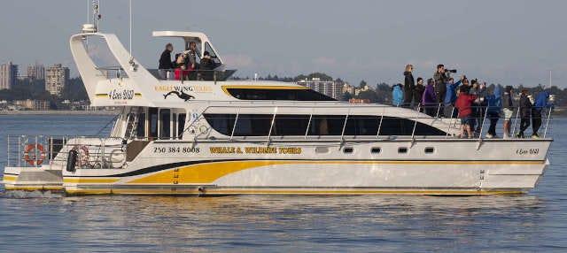 Balade en bateau sur le détroit de Juan de Fuca