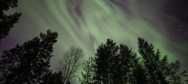 Tour de 4 días de auroras boreales
