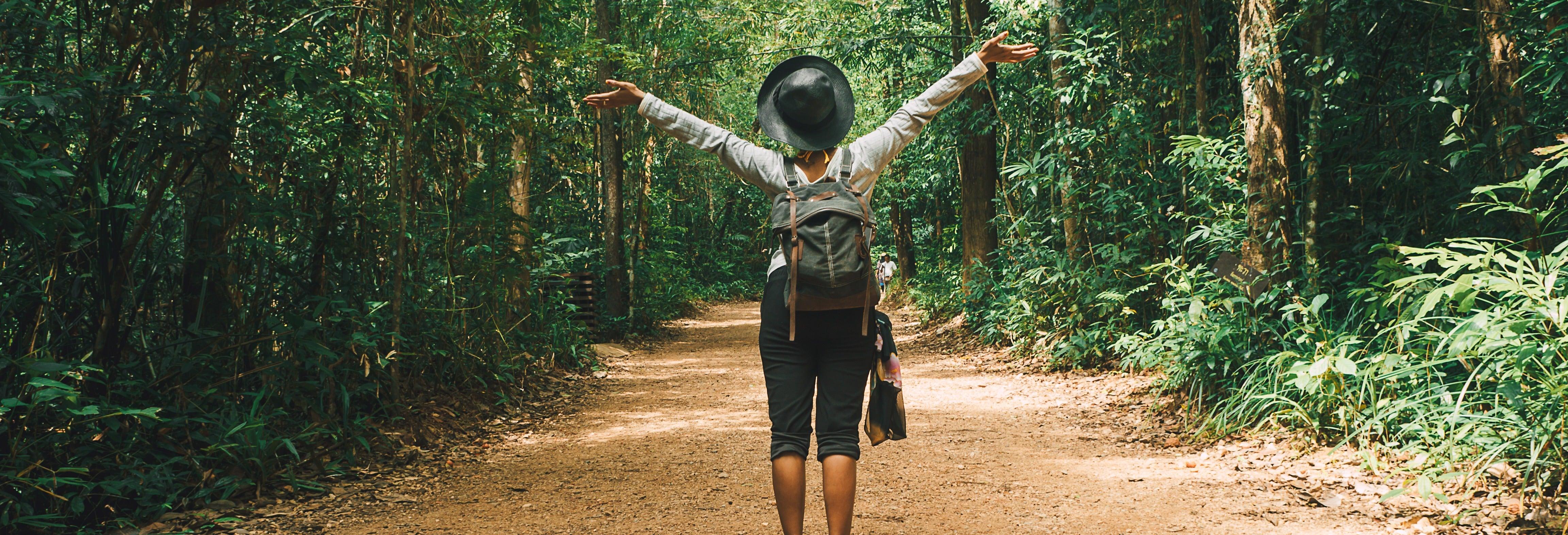 Excursão ao Bosque de Pedra e Parque Nacional Chiloé