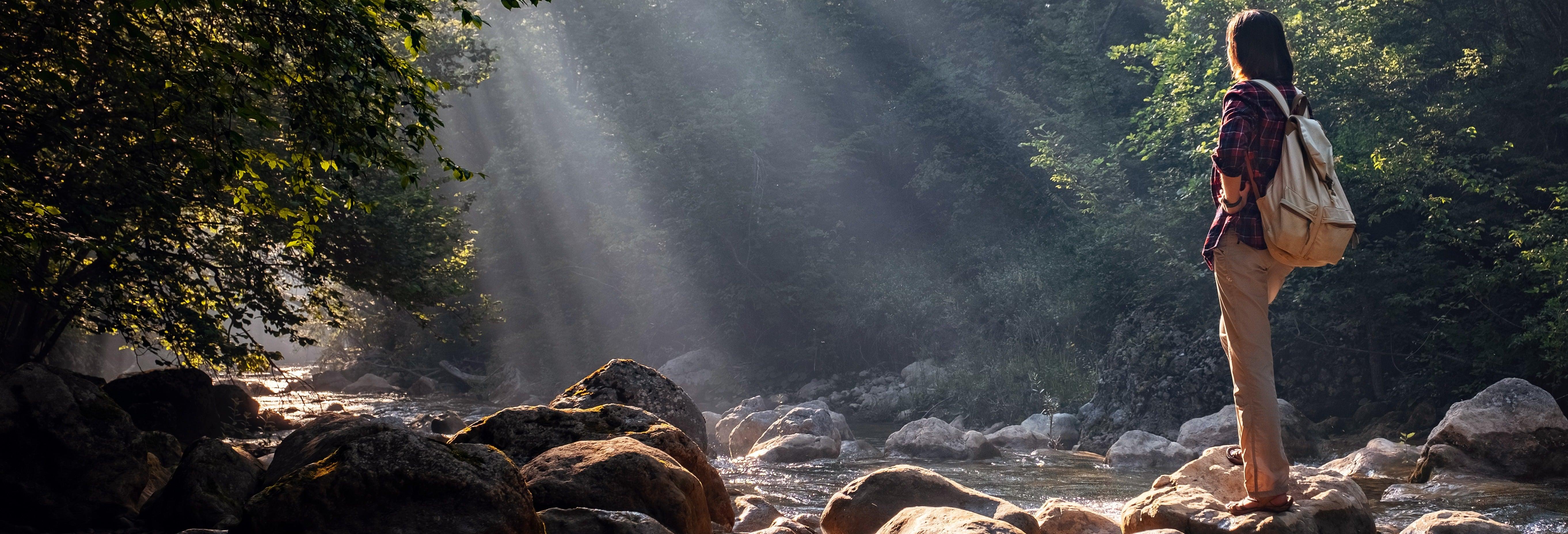 Excursión al Bosque de Piedra y Parque Nacional de Chiloé