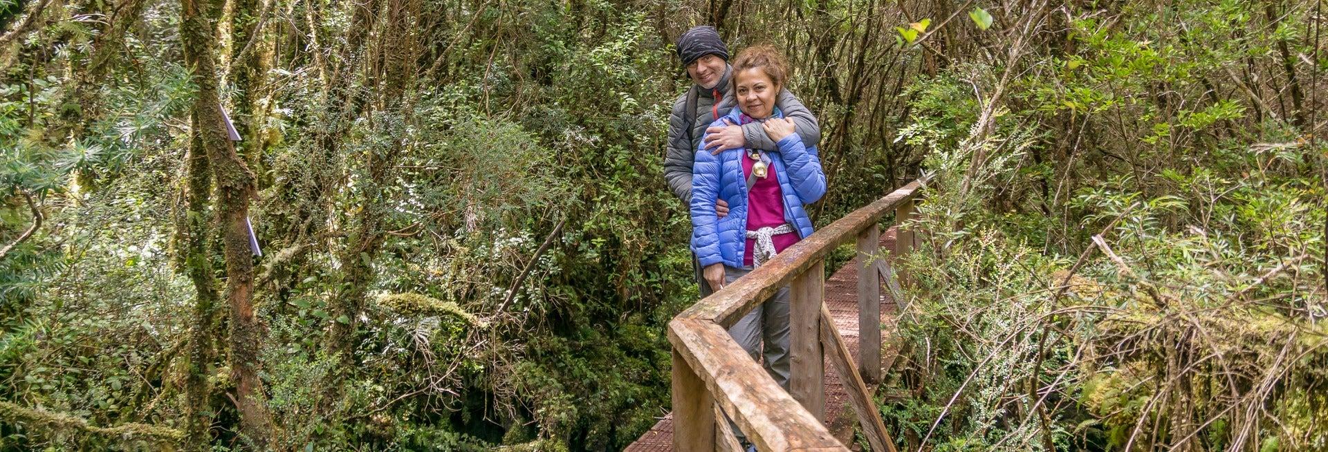 Excursión al Parque Tantauco