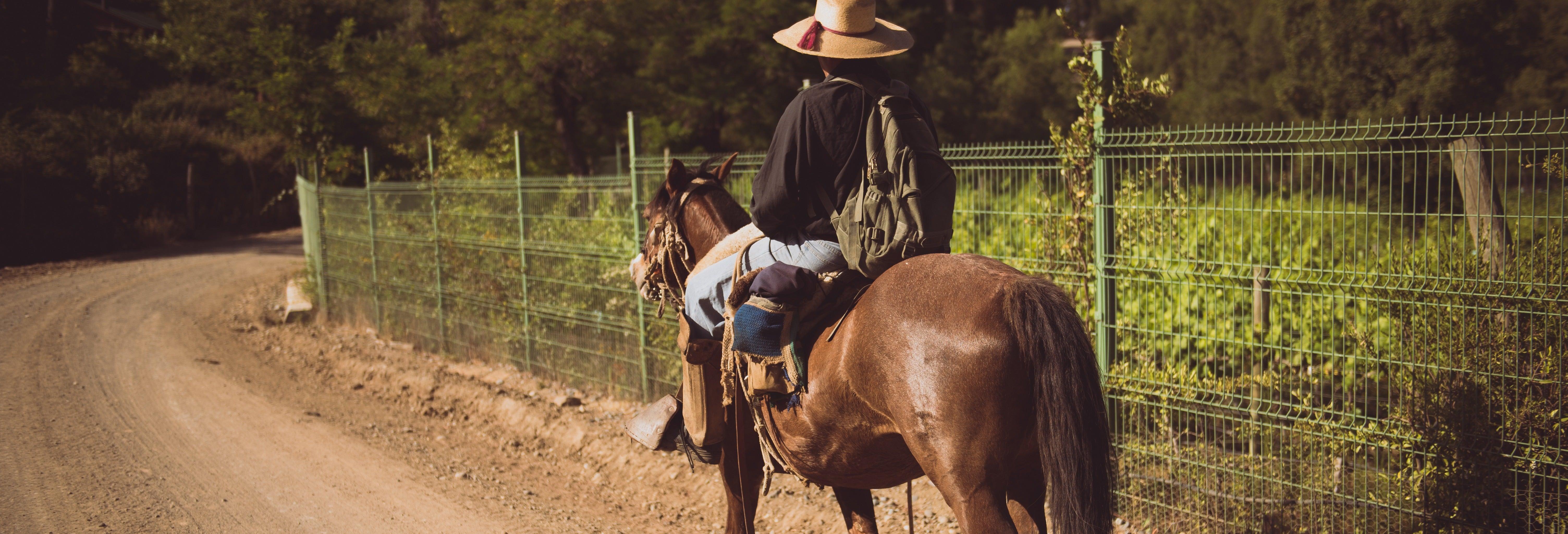 Paseo a caballo por el valle del Elqui